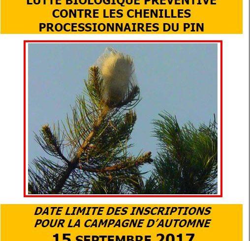 Lutte préventive biologique contre les chenilles processionnaires du pin – Automne 2017