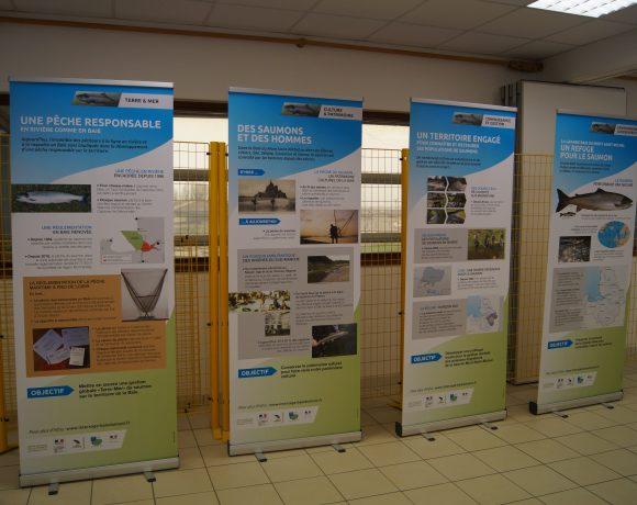EXPOSITION LES POISSONS MIGRATEURS EN BAIE DU MONT SAINT-MICHEL avec le Centre de Découverte de la Baie