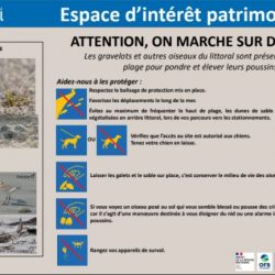 OPERATION LITTORAL 2021 « ATTENTION, ON MARCHE SUR DES OEUFS ! »